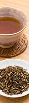 Roasted Green Tea ほうじ茶